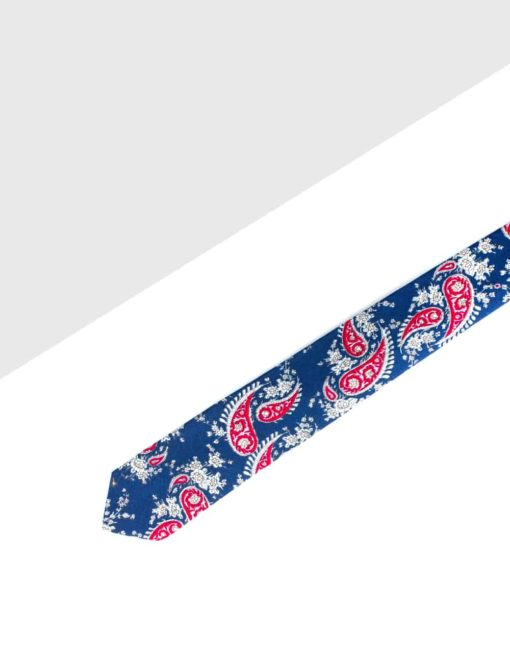 Navy with Red Paisley Print Woven Necktie NT20.8