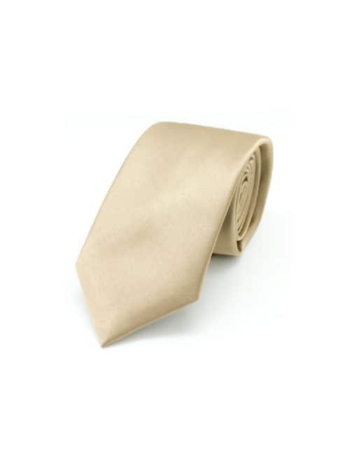 Solid Lark Brown Woven Necktie NT16.9