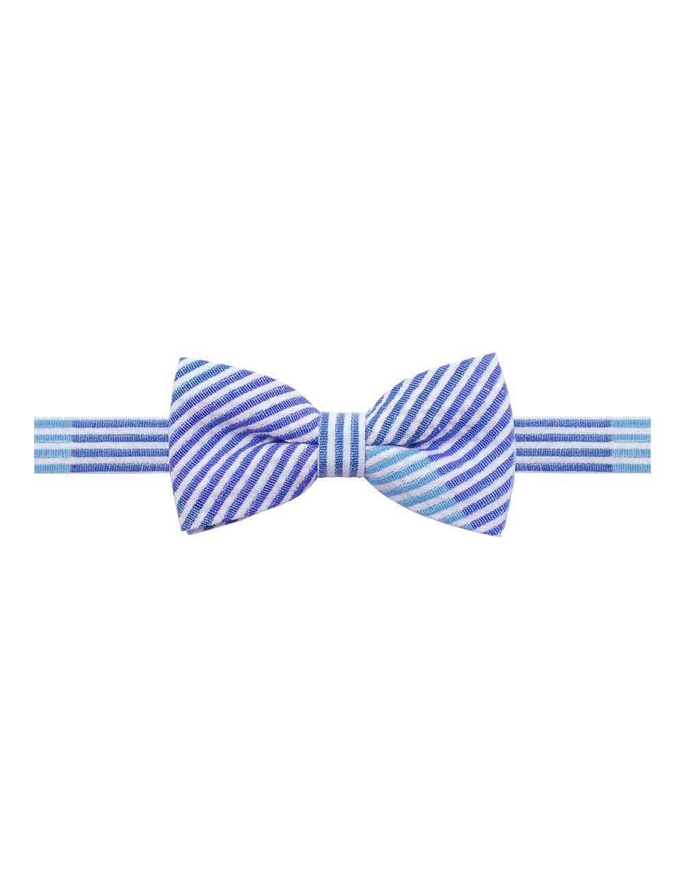 Blue Stripes Woven Bowtie WBT12.8
