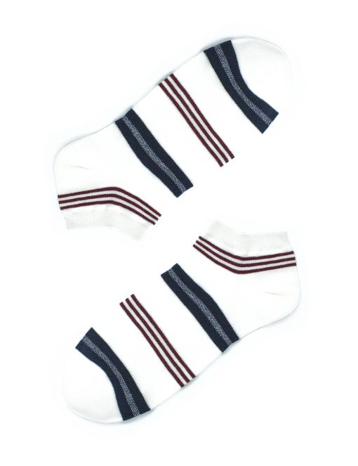 Blue and Brown Stripes Necktie and Socks Gift Set - AGS1NTS3.1